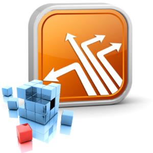SLP Extended Data Manager